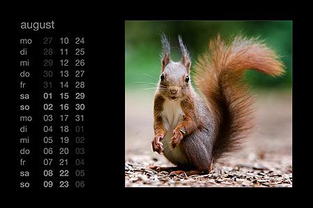 kalenderblatt august